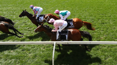 Jockey Hugh Bowman (in pink) on board Anthony Van Dyck in the Melbourne Cup.