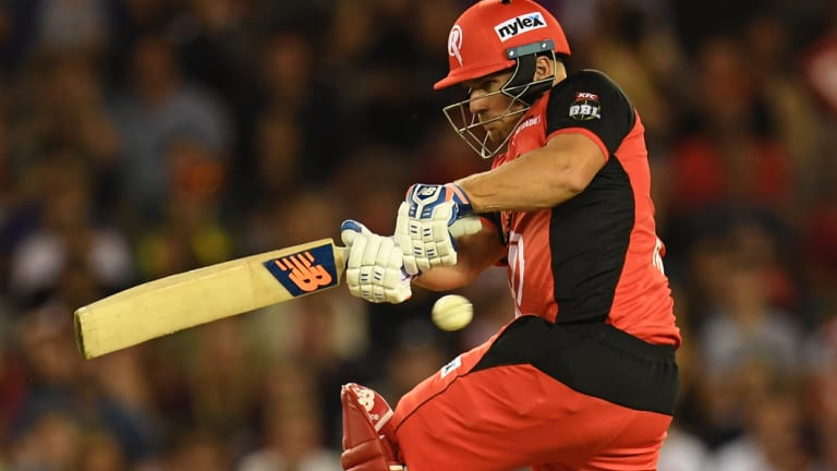 The Renegades' Aaron Finch found some form.