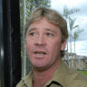 Baseball team apologises for using Steve Irwin's death as Twitter taunt