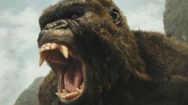 Godzilla vs  Kong begins filming on the Gold Coast