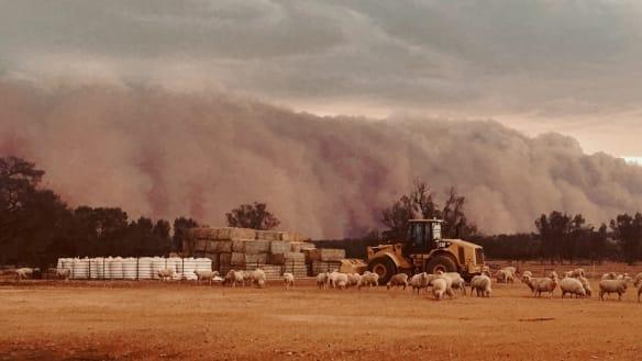 Huge 'wall of dust' sweeps across western NSW