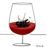 Swill or save: what to do if a fly lands in your wine