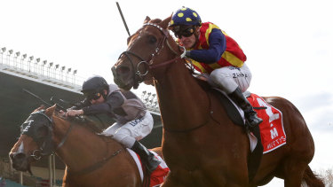 Mark Zahra drives Nature Strip to victory.