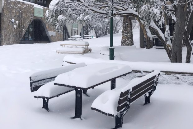 Mt Buller has been blanketed with 40cm of fresh snow making for school holiday snow play heaven for regional Victorians.