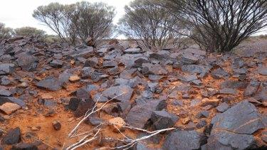 The site of the Australian Vanadium Project.