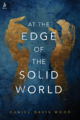<i>At The Edge of the Solid World</i> by Daniel Davis Wood