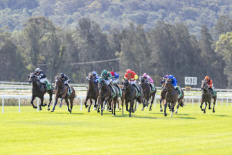 Big fields are the order of the day at Wellington on Monday.