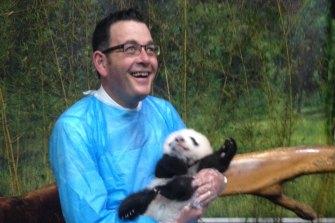 Daniel Andrews visiting pandas during his 2015 China trip.