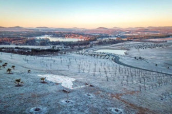 Erna Glassford snapped this photo of the National Arboretum when the temperature dropped to minus 6 during the week.