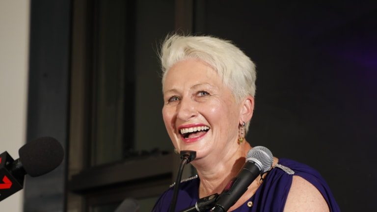 Kerryn Phelps will lobby Health Minister Greg Hunt to suspend the rollout of My Health Record.