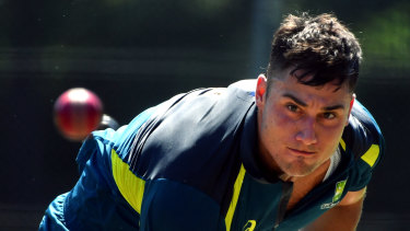 Injured Marcus Stoinis will be replaced by Mitch Marsh.