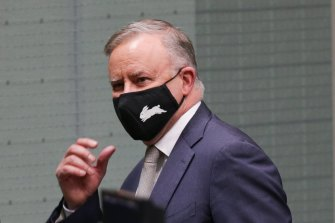 Opposition Leader Anthony Albanese. has accused the government of trying to 'emasculate' the Australian Renewable Energy Agency.