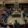 Audit finds a dozen MPs without working with children checks