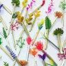 Plotlines: precious weeds