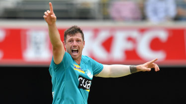 James Pattinson of the Heat celebrates the wicket of Harry Nielsen of the Strikers.