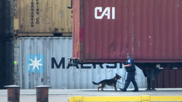 An officer with a dog inspects the container along the Delaware River in Philadelphia.