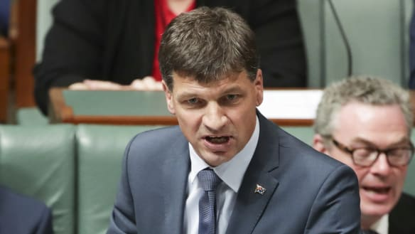 Angus Taylor confirms government 'won't be replacing' renewable energy target