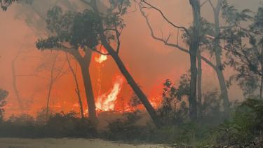 A fire on Moreton Island over the 2019-20 bushfire season.