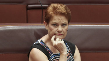 Senator Pauline Hanson said increasing JobSeeker removes incentive for recipients to find work.
