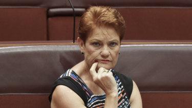 Senator Pauline Hanson said increasing JobSeeker removes incentive for recipients to find work.