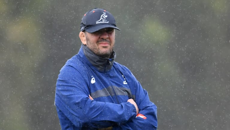 Michael Cheika has been under fire since Australia's 16th consecutive Bledisloe Cup defeat.