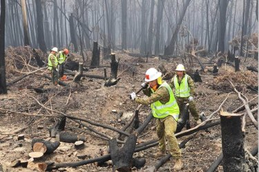 Treasurer warns surplus at risk as fires hit economy
