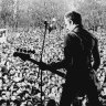 Rock Against Racism doco serves up a timely blast of punk and politics