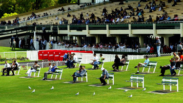 Spectators and seagulls watch the races at Sandown in 2004