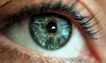 About one in 10 people have never been to an optometrist.