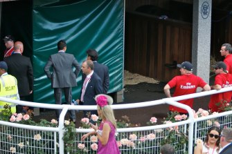 2014 Melbourne Cup race favourite Admire Rakti died in its stalls in full view of the racegoers.