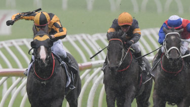Emotional win: Blake Shinn rides Trapeze Artist (far left) to victory in the Canterbury Stakes.