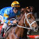 Vowmaster wins at Moonee Valley in November.
