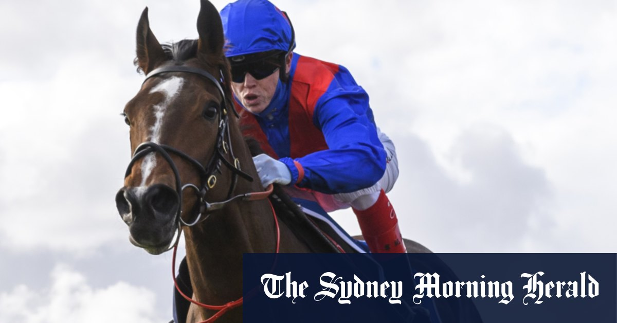Cox Plate favourite Zaaki scratched on race morning