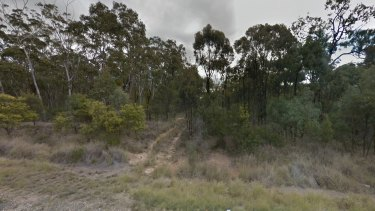 The Durikai State Forest, off the Cunningham Highway, about 160 kilometres south-west of Brisbane.
