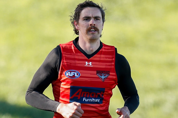 Back on track: the AFL hiatus has given Essendon forward Joe Daniher time to recovery from injury.