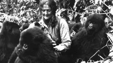 Dian Fossey in the film Gorillas in the Mist.
