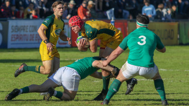 Harry Wilson takes the ball into contact in Australia's 45-17 win over Ireland.