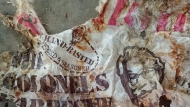 Sunshine Coast Clean Up Divers found debris and a 40-year-old plastic KFC bag in the ocean.