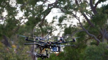 A drone used by QUT researchers to monitor koala populations in southeast Queensland