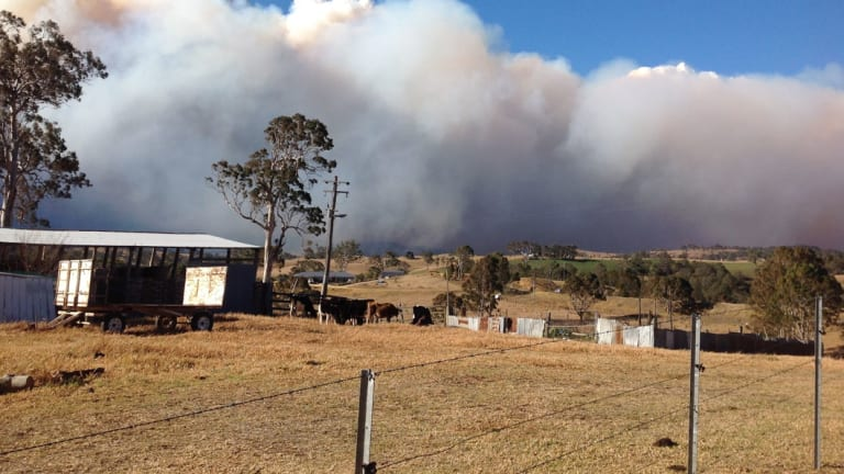 A 300-hectare fire burns out of control at Bemboka last month.