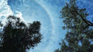 Sun halos are caused by the presence of ice particles in the upper atmosphere.