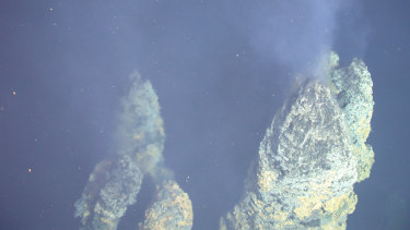 This image shows a hydrothermal vent chimney spewing out hydrothermal fluids.