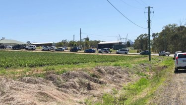 Cars queue at a Wamuran strawberry farm for two hours on Wednesday.