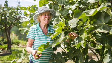Anne Norris at her home in Giralang next to her fig tree.