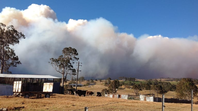 A 300-hectare fire burns out of control at Bemboka.