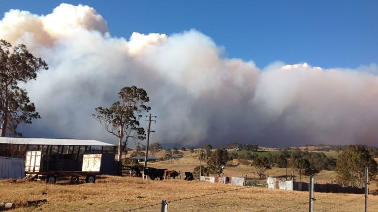 A fire burning out of control north of Bemboka.