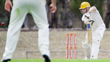 Rhys Healy has led Ginninderra back to the Cricket ACT Douglas Cup final.