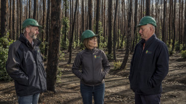 Kangaroo Island Plantation Timber's managing director Keith Lamb (left), director Shauna Black and forestry operations manager Brian Stewart among fire damaged blue gum trees that are still growing, but need to be harvested.