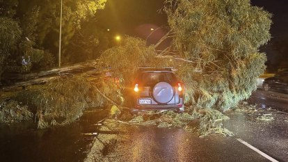 Perth motorist narrowly escapes fallen tree as blackouts, hail and gas leaks greet August