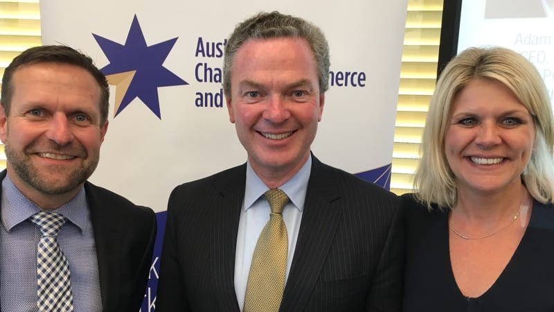 Pressure builds on Pyne over EY role